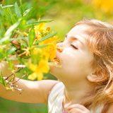Kúpele Lučivná – nádej pre deti s alergiami a chorobami dýchacích ciest