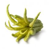 Budhova ruka – čínsky citrus s neuveriteľnými účinkami na zdravie