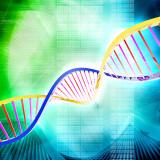 Onkologické vedomie alebo čo majú pacienti s rakovinou spoločné