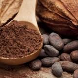 Kakao a kakaovník