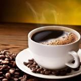 Káva a kávovník