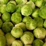 Kel – zelenina pre zdravé tehotenstvo