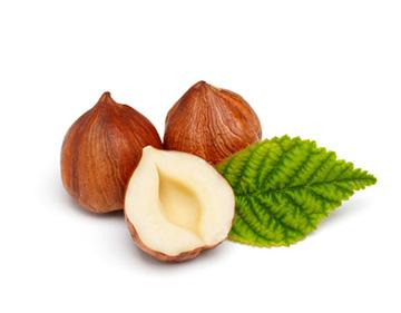 Lieskový orech