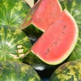 Melón červený – letné ovocie ideálne na chudnutie i proti stresu