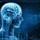 Vyrábame mozgové závity alebo ako trénovať mozog