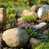 Návrhy bylinkových záhrad